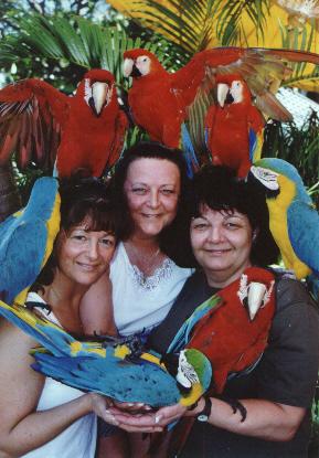 Doreen Judy  Carol In Hawaii